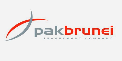 Annual Report 2012 of Pak Brunei Investment Company Limited