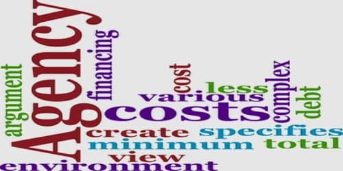 About Agency Cost
