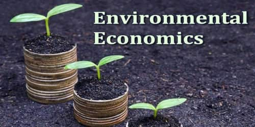 About Environmental Economics