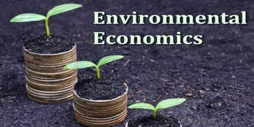 About Environmental Economics