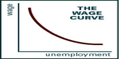 About Wage Curve