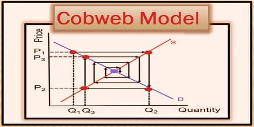 Cobweb Model