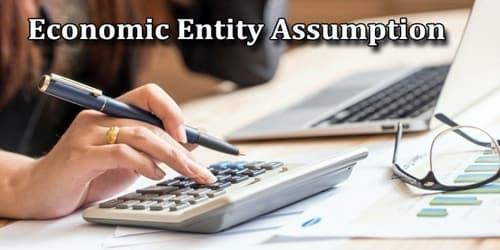Economic Entity - Assignment Point
