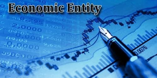 Economic Entity