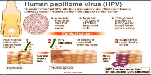 Hpv transmitted thru sexual intercourse nothing