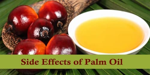 Side Effects of Palm Oil