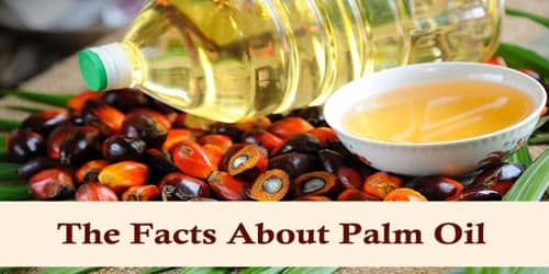 The Facts About Palm Oil