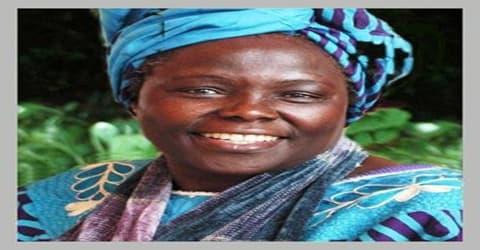 Biography of Wangari Maathai