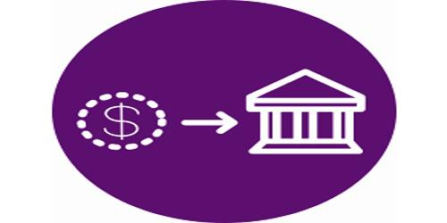 Depository Institutions of Financial Institutions