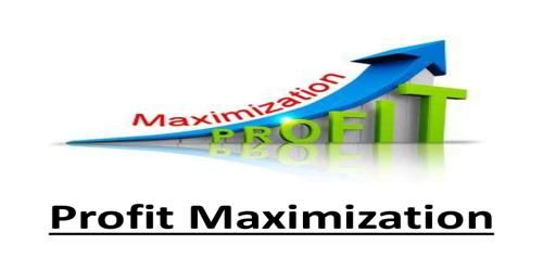 Decision Process of Wealth Maximization Objective