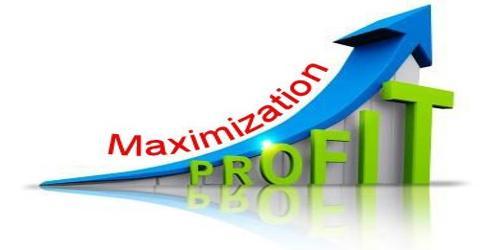 Concept of Profit Maximization Objective