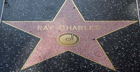 Biography Of Ray Charles Assignment Point