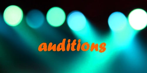Sample Auditions Announcement Letter Format