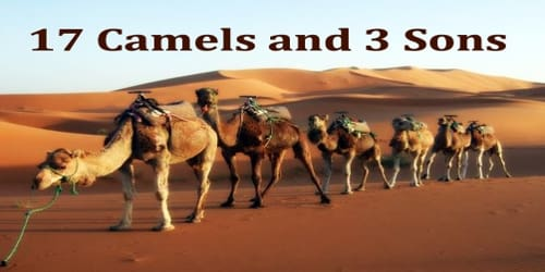 17 Camels and 3 Sons