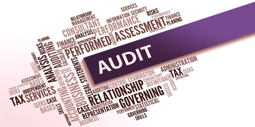 Audit of Non-Governmental Organizations (NGOs)