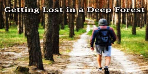 Getting Lost in a Deep Forest