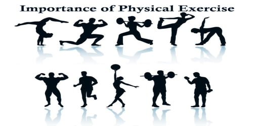 Importance of Physical Exercise