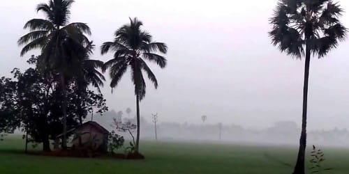 Winter in Bangladesh