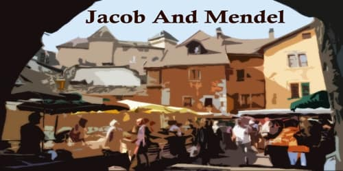 Jacob And Mendel