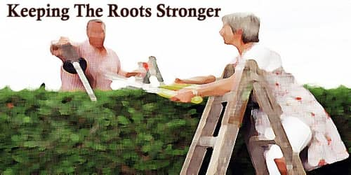 Keeping The Roots Stronger