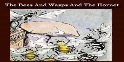 The Bees And Wasps And The Hornet