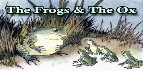 The Frogs And The Ox