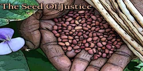 The Seed Of Justice