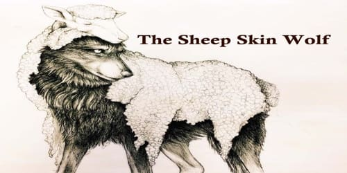 The Sheep Skin Wolf