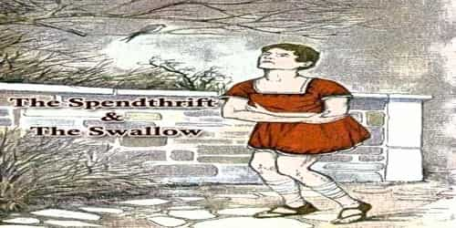 The Spendthrift And The Swallow