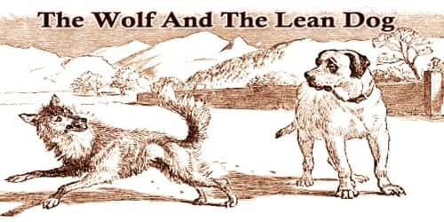 The Wolf And The Lean Dog