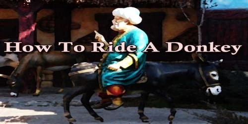 How To Ride A Donkey