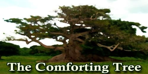 The Comforting Tree