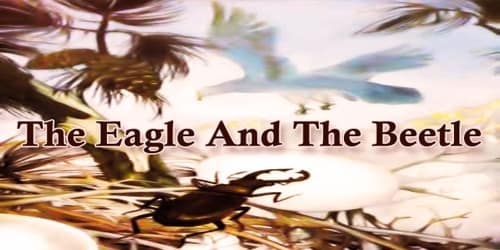 The Eagle And The Beetle