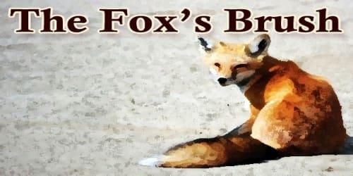 The Fox's Brush