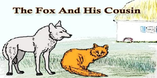 The Fox And His Cousin