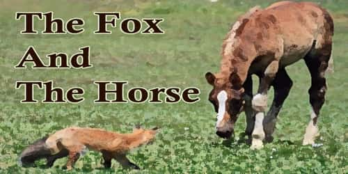 The Fox And The Horse