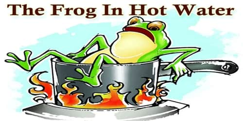 The Frog In Hot Water
