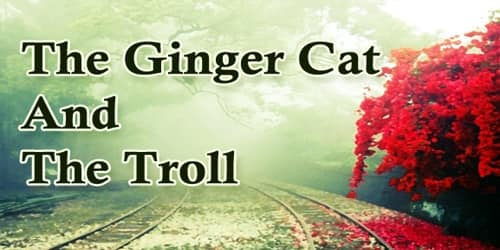 The Ginger Cat And The Troll