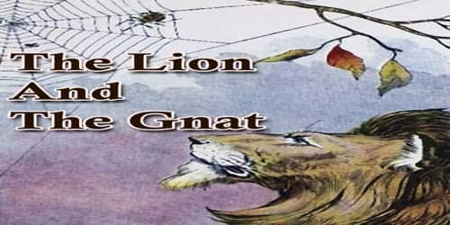 The Lion And The Gnat