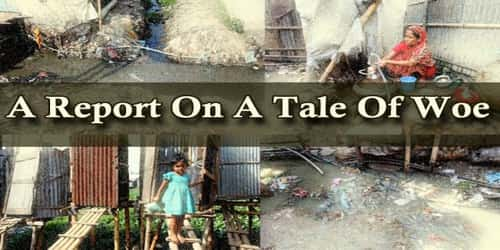 A Report On A Tale Of Woe