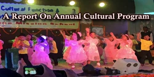 A Report On Annual Cultural Program Held At (Name of School/College)