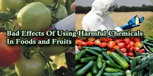A Report On Bad Effects Of Using Harmful Chemicals In Foods and Fruits