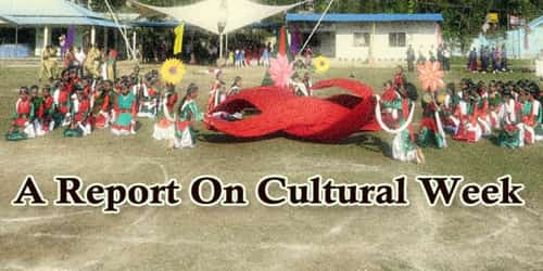 A Report On Cultural Week Held At (Name Of Institution)………School/ College