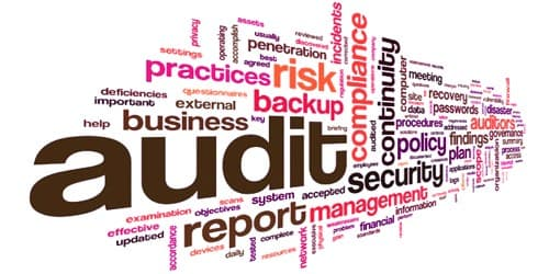Disadvantages of Cost Audit