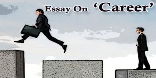 Essay On Career