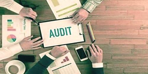 Flexible Audit Program