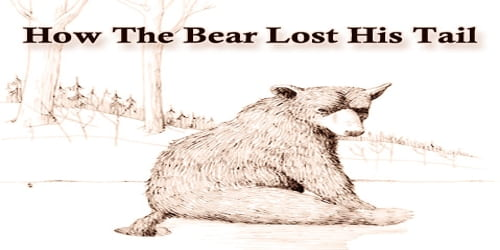 How The Bear Lost His Tail