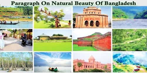 Paragraph On Natural Beauty Of Bangladesh