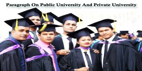 Paragraph On Public University And Private University