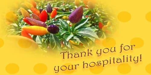 Sincere Gratitude for Hospitality